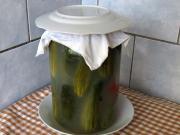 Kvašáky - kvasené uhorky